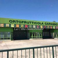 Capannone/Magazzino/Negozio - Caltignaga(NO)