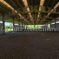 Capannone/Terreno Edificabile - Trecate(NO)