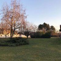 Capannone/Magazzino/Laboratorio/Terreno Edificabile - San Pietro Mosezzo(NO)